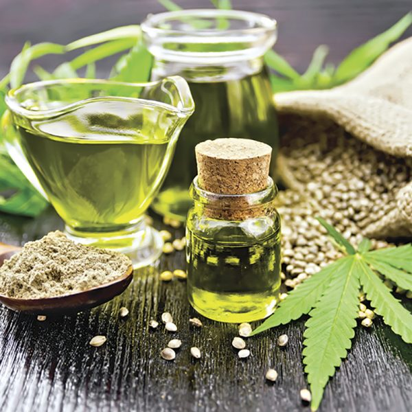 Canna hanfextrakt Cannabis Seeds Oil